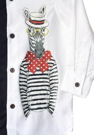Mr. Zebra