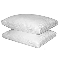 Set of 2: Feather Pillows