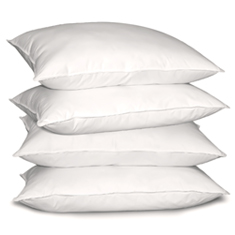 Set of 4: Feather Pillows