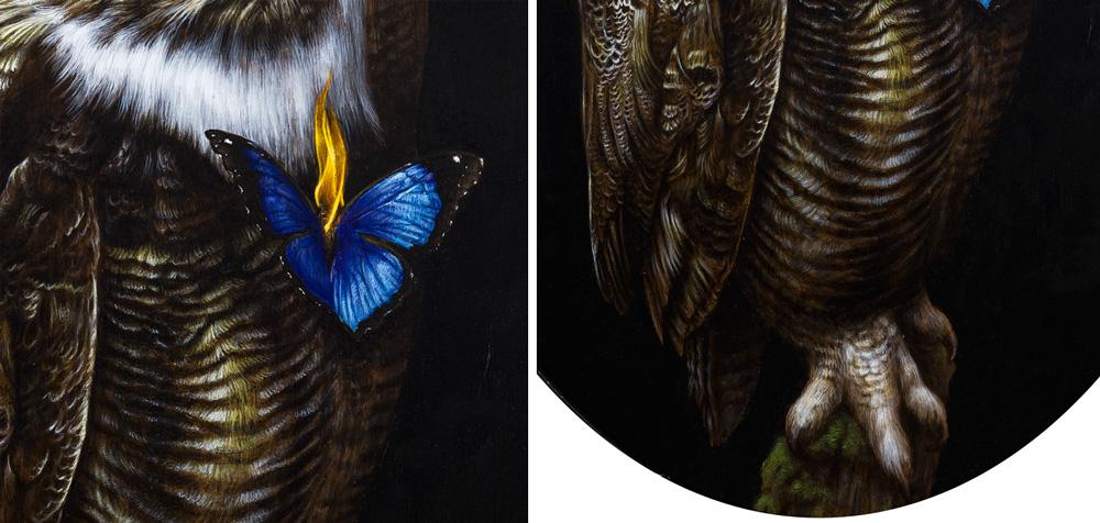 owl-detail2