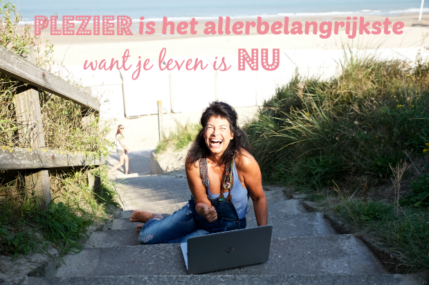 plezier in je business