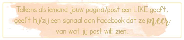 facebook-groei