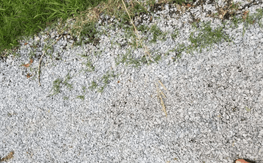 Gravel driveway scams to avoid