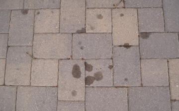 Oil spots on an interlocking paver driveway