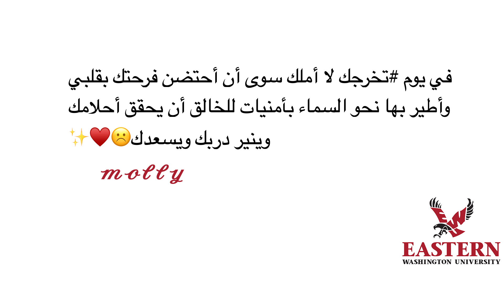 tbi_abdulrahman-abdullah-a_2240.png