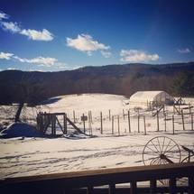 Bethlehem Farm