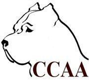 Cane Corso Association of America