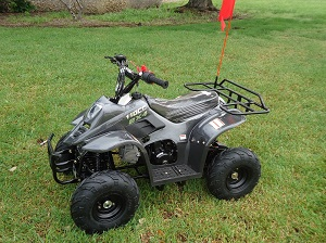 Buy NEW RPS CRT 110-6S ATV 110CC AIR COOLED, SINGLE CYLINDER 4 STROKE for sale at - 360powersports.com