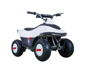 TaoTao ROVER350 350 Watt, Brush Electric Motor