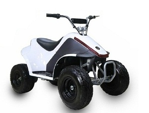 TaoTao ROVER500 500 Watt, Brush Electric Motor