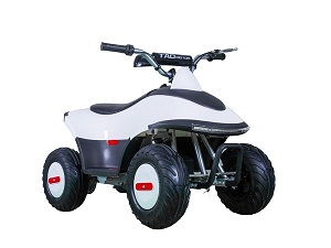 TaoTao ROVER350 350 Watt, Brush Electric Motor