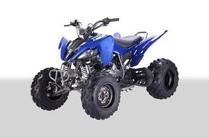 Vitacci Pentora 250cc Racing ATV