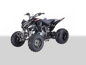 Buy The TaoTao ATA-110 B1 | Kids ATV 110cc for Sale Online