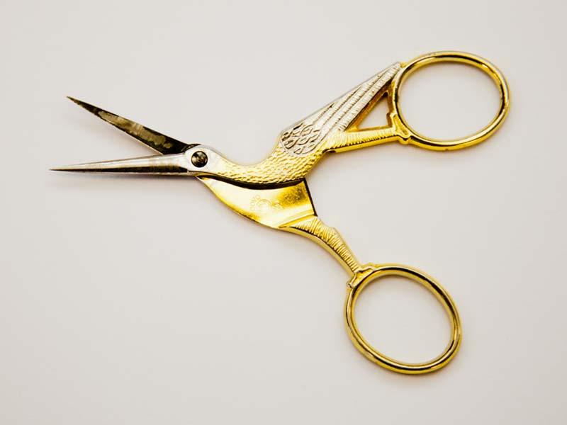 bird-scissors.jpg