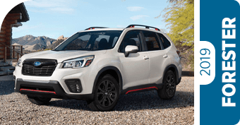 Compare the new 2019 Subaru Forester Model to the Competition in Seattle, WA