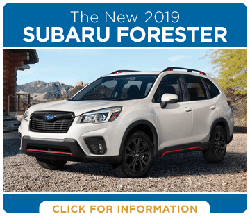 Browse our 2019 Forester model information at Hanson Subaru in Olympia, WA