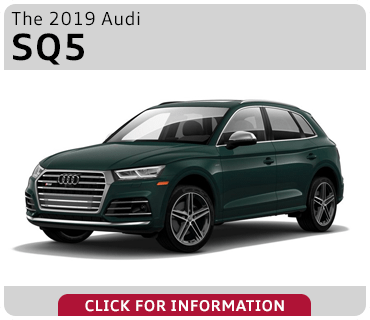 Browse our 2019 Audi SQ5 model information at Audi Gilbert