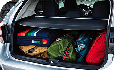 A 2019 Subaru Crosstrek with a cover shielding a full cargo area.