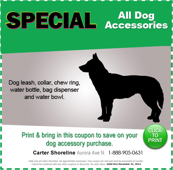 Dog Accessories Special Seattle | Subaru Parts