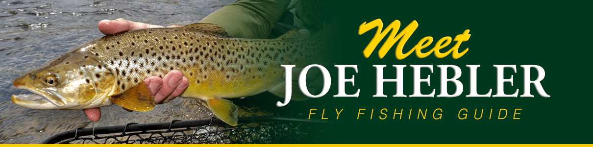 Meet Joe Hebler - Fly Fishing Guide at The Blue Quill Angler