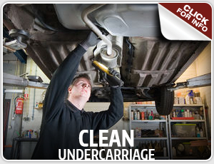Click to research our Kia clean undercarriage service available in Olympia, WA