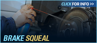Click to View Information about Ford Brake Squeal Service