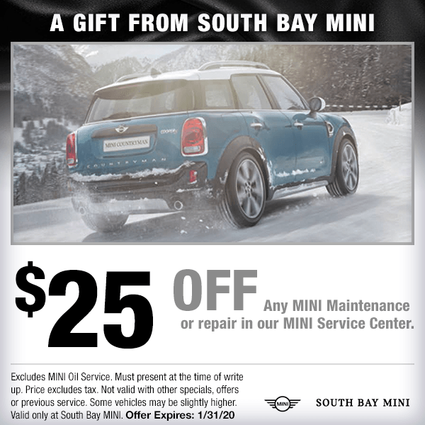 A GIFT FROM SOUTH BAY MINI Service Special