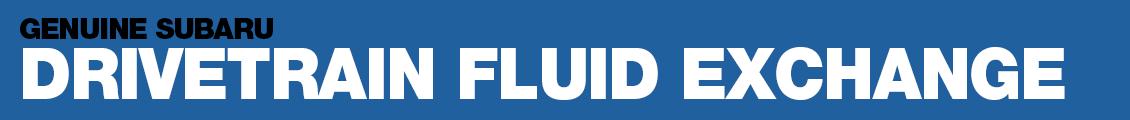 Drivetrain Fluid Exchange Service Information