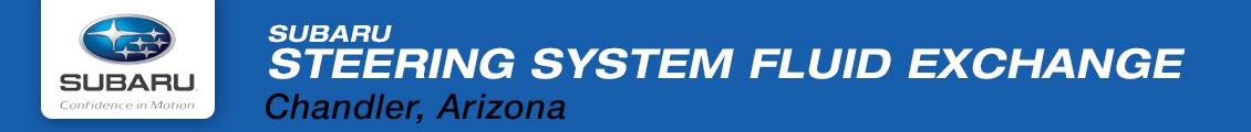 Steering System Fluid Exchange Service Information