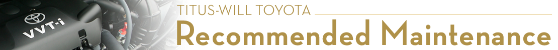 Genuine Toyota Scheduled Maintenance Details