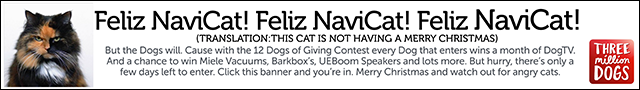 12 Dogs of Giving Christmas Contest
