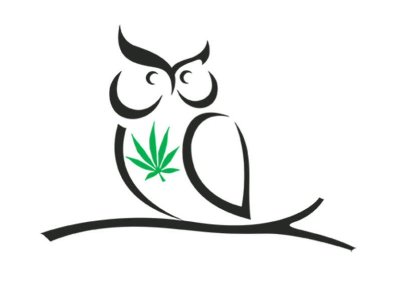 Cannabis & CBD Accounting Services