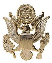 Eagle Lapel Pin