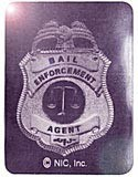 Square Bail Enforcement Foil Hologram