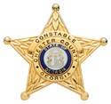 2.62 inch 5 Point Star Smith & Warren Constable Badge E106A