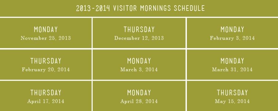Visitor-Mornings