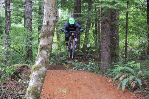Downhill Mountain Biking Flow Trail