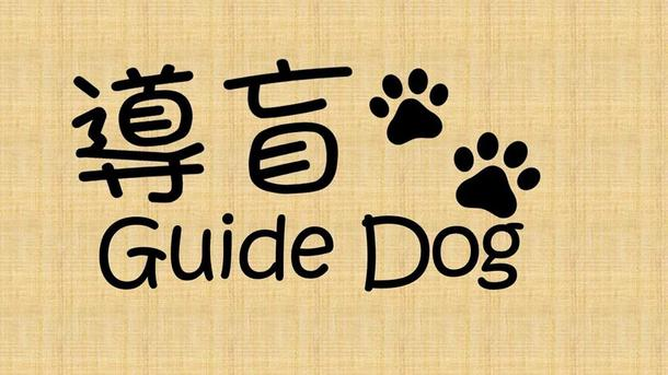 《導盲.Guide Dog》ICE-CREAM CHALLENGE