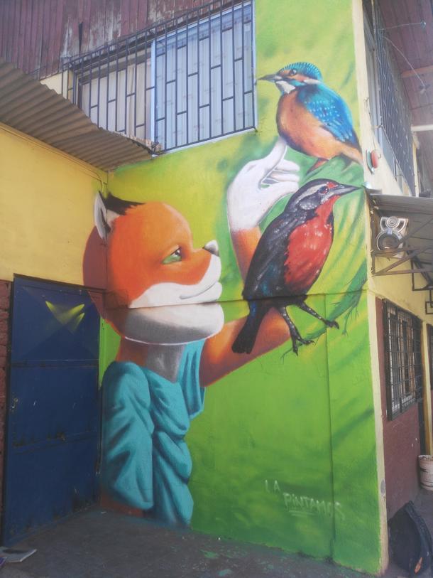 Viaje a Brasil. Csk representa Chile y IX region en Graffiti