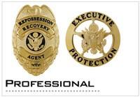 Professional Badges
