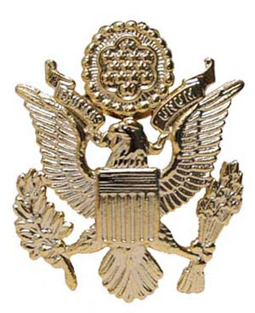 Eagle Lapel Pin