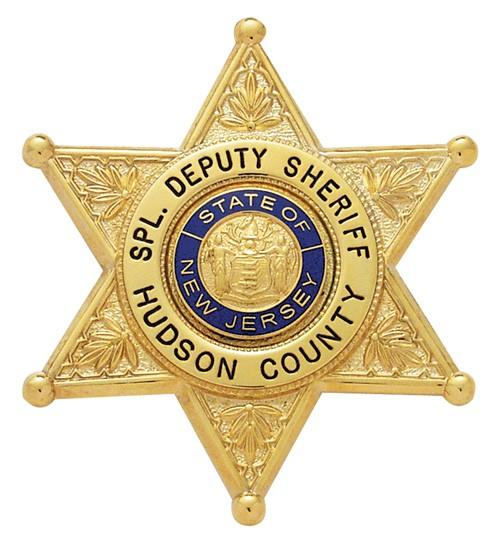 2.9 inch 6 Point Star Smith & Warren Badge S257