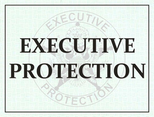 Executive Protection Windshield Pass