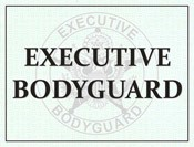 Executive Bodyguard Windshield Pass