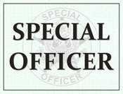 Special Officer Windshield Pass