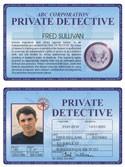 Private Detective Deluxe Folio