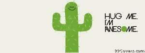 cactus hug Facebook Cover Photo
