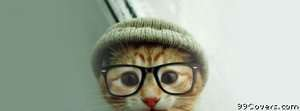cat hat glasses Facebook Cover Photo