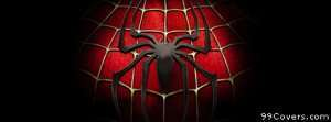spider man Facebook Cover Photo