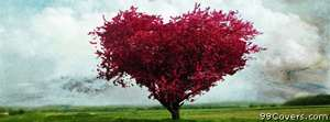 The love tree Facebook Cover Photo